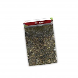 My Village Muschio Scatter Moss Green 120 G