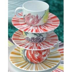 Tazza tè con piatto Protea Richard Ginori